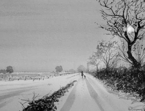 Vines in the snow. A study in Paynes grey.