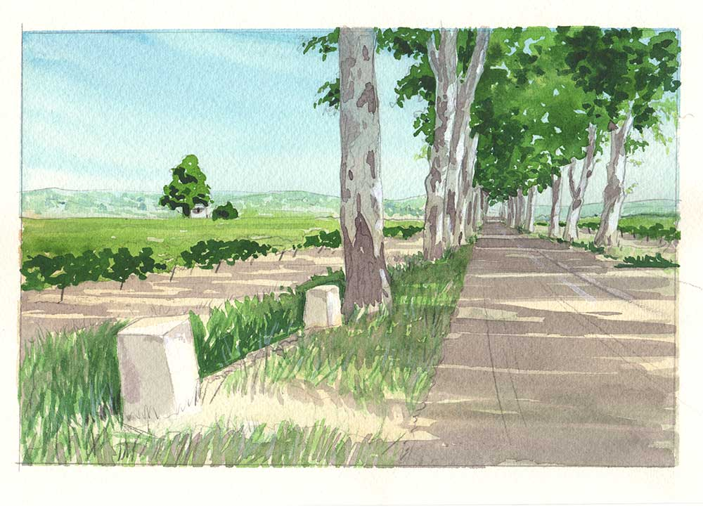 road to neffies - Painting vacation in the South of France