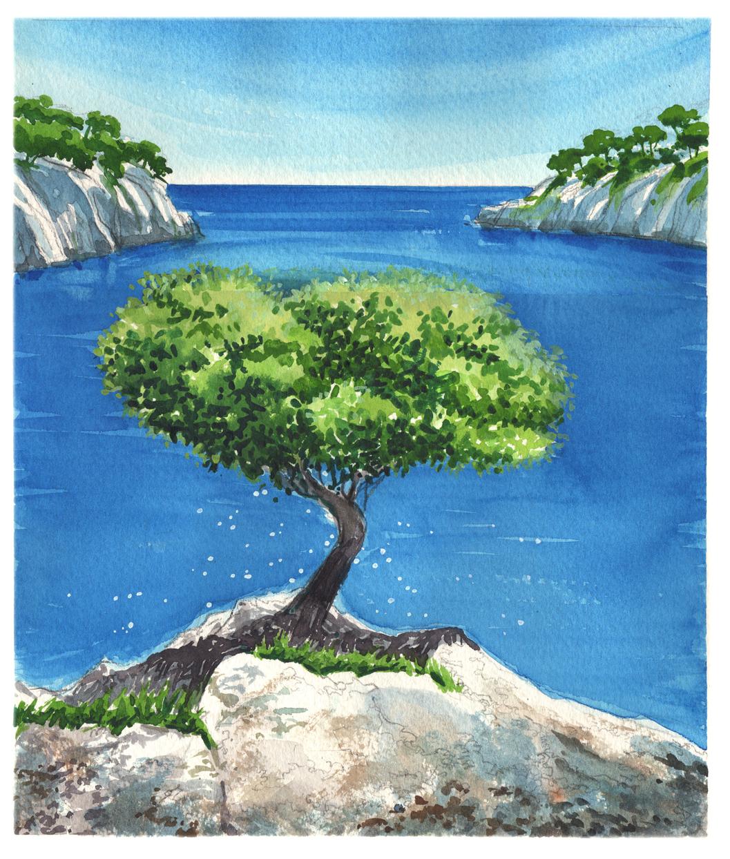 Mediterranean pine simon roberts painting in france